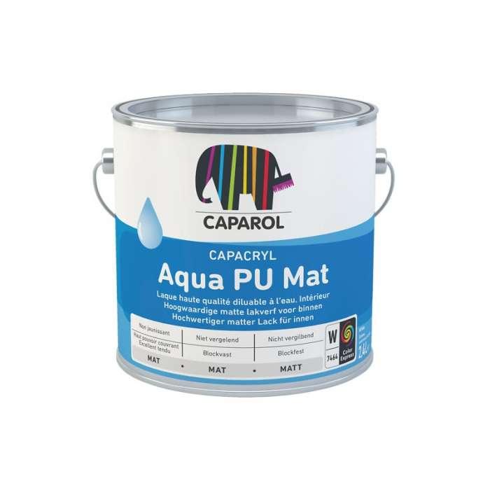 Capacryl aqua pu mate